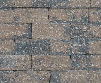 Garden Stone Bracken
